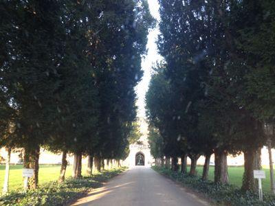 最後の訪問地、ヴェローナ近郊にて