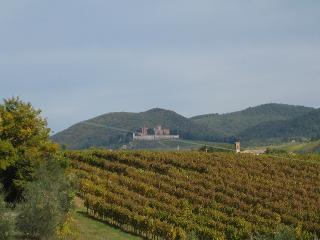 シエナ近郊の小さな街 ~Castello Brolio~